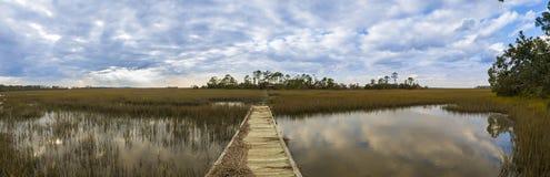 panorama di Carolina del Sud da 180 gradi Fotografie Stock Libere da Diritti