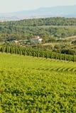 Panorama di classico di Chianti fotografia stock libera da diritti