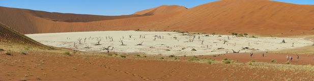 Panorama di Deadvlei, Sossusvlei Fotografia Stock