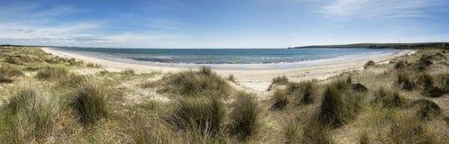 Panorama di Dorset della spiaggia di Studland Fotografie Stock Libere da Diritti