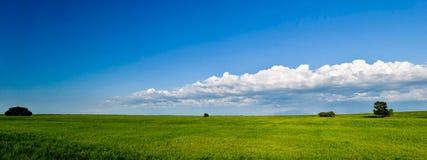 Panorama di estate fotografia stock libera da diritti