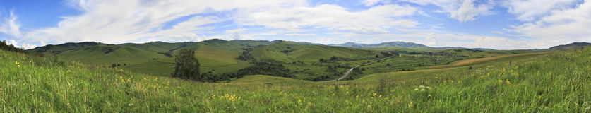 Panorama di estate delle montagne di Altai. fotografia stock libera da diritti
