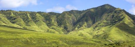 Panorama di Hawiian immagine stock
