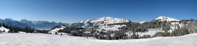 Panorama di inverno fotografia stock libera da diritti