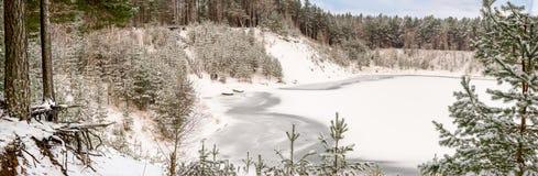 Panorama di inverno del lago della foresta - ghiaccio e neve dappertutto Fotografia Stock