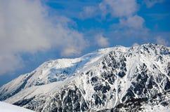 Panorama di inverno delle montagne Immagini Stock Libere da Diritti