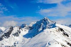 Panorama di inverno delle montagne Immagini Stock