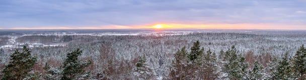 Panorama di inverno di paesaggio con gli alberi ed i campi - tramonto Fotografia Stock