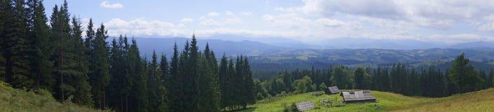 Panorama di Karpatian Fotografie Stock