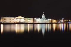 Panorama di Kunstkamera e di Neva, San Pietroburgo Immagini Stock