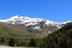 Panorama di Mountain Palon de la Mare nelle alpi di Ortler Immagine Stock