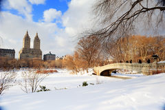 Panorama di New York City Manhattan Central Park Fotografie Stock