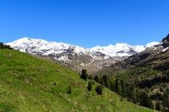 Panorama di Palon de la Mare del ghiacciaio e della montagna di Forni nelle alpi di Ortler Immagine Stock Libera da Diritti