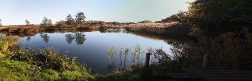 Panorama di piccolo lago di pesca, Danimarca Fotografie Stock