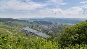 Panorama di Piesport sul Mosella Germania Immagine Stock Libera da Diritti
