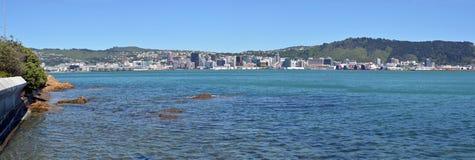 Panorama di primo mattino del paesaggio della città & di Wellington Harbour Immagine Stock Libera da Diritti