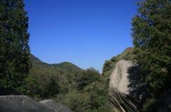 Panorama di South Fork della sequoia Fotografie Stock Libere da Diritti