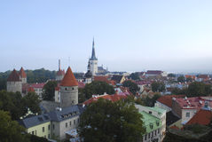 Panorama di Tallin Immagine Stock