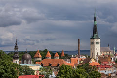 Panorama di Tallinn Immagine Stock