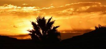 Panorama di tramonto Fotografie Stock