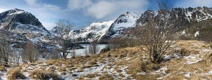 Panorama di un paesaggio di inverno sulle isole di Lofoten, fotografia stock