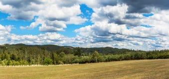 Panorama di un paesaggio tipico in repubblica Ceca Vista delle colline degli altopiani vicino a Tisnov Albero nel campo Immagine Stock Libera da Diritti