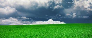 Panorama di un prato e di una nuvola Immagini Stock