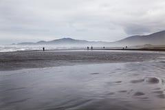 Panorama di una spiaggia al parco nazionale di Chiloe. Fotografia Stock Libera da Diritti