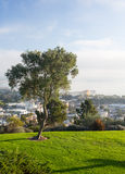 Panorama di Ventura dalla sosta di Grant Fotografie Stock Libere da Diritti