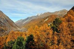 Panorama di zermatt nella caduta Immagini Stock Libere da Diritti