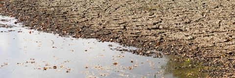 Panorama of diminishing water and drought in the pond. Droughts as a result of global warming stock photos