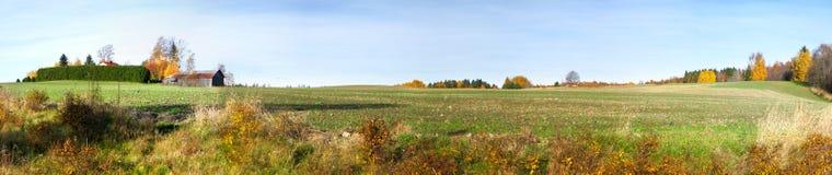 Panorama do campo fotografia de stock