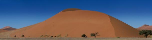 Panorama do campo da duna de Sossusvlei Imagens de Stock Royalty Free