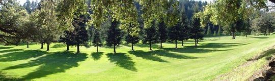 Panorama do campo de golfe Fotografia de Stock