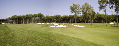 Panorama do clube de golfe Foto de Stock Royalty Free