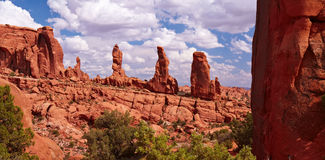 Panorama do deserto Fotos de Stock Royalty Free