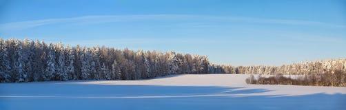 Panorama do dia ensolarado do inverno imagens de stock