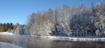 Panorama do inverno fotografia de stock royalty free