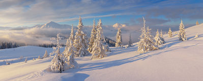 Panorama do inverno Foto de Stock Royalty Free