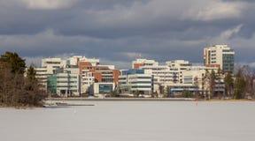 Panorama do inverno Fotos de Stock Royalty Free