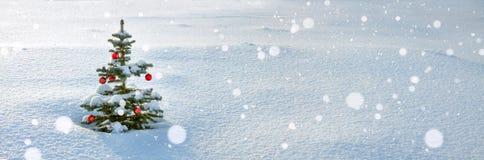 Panorama do inverno com a árvore de abeto do Natal e do ano novo Fotografia de Stock