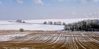 Panorama do inverno (muito sharp) Fotografia de Stock Royalty Free