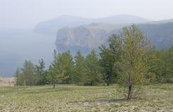 Panorama do Lago Baikal do banco das árvores fotografia de stock