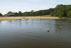 Panorama do lago creek dos ganchos fotos de stock royalty free