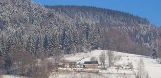Panorama do país da montanha do inverno com floresta do abeto Foto de Stock Royalty Free