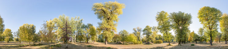 panorama do parque de 360 graus imagens de stock royalty free