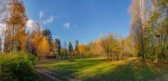 Panorama do parque do outono imagem de stock royalty free