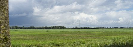 Panorama do prado holandês com campo de grama e da torre de alta tensão em Bleskensgraaf, os Países Baixos imagens de stock