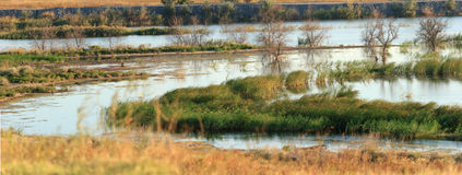 Panorama do rio do outono Foto de Stock Royalty Free