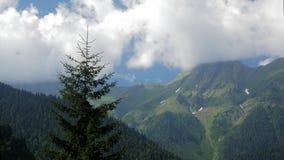 Panorama do ritsa do lago, a Abkhásia, Cáucaso do sul Lapso de tempo filme